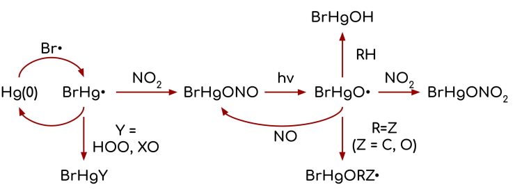 Scheme of Br + Hg to fate of BrHgO