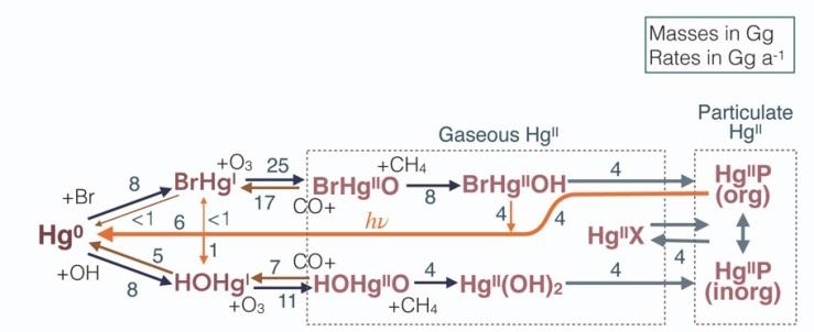 2021_GEOS-Chem_Hg-cycling